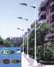 淄博太阳能路灯厂家