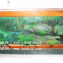 墙体彩绘—家装3D森林装饰彩绘-山西小小墙绘工作室