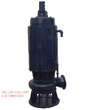 辽源WQB高防爆等级潜水泵震撼上市感恩回馈图片