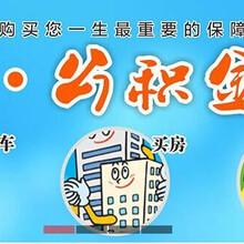 办理深圳社保,社保五险一金代办,补缴社保养老险