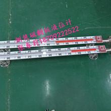 隴南不銹鋼磁浮子液位計,臨夏投入式液位計價格圖片