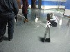 保定車庫廠房地面空鼓AB-5樹脂優良,金剛砂地面空鼓處理