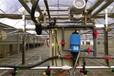 邯郸温室全自动小型自走式平移蔬菜花卉烟草育苗喷灌机---大棚育苗喷水车