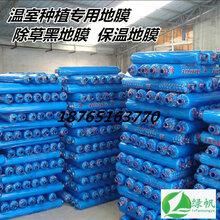塑料布薄膜大棚/温室/农田/蓝色地膜/黑色地膜/保温/保墑/除草膜图片