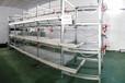 鲁兴农牧鸭笼设备自动化鸭笼