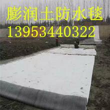 5000克钠基膨润土防水毯生产商图片
