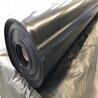 农业合作社采用全新料加双抗1.5mm黑膜沼气池土工膜封盖