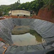 河北鱼塘防逃膜鱼池护坡防渗膜规格图片