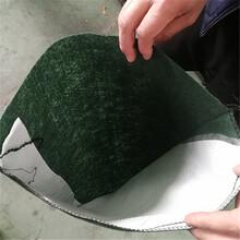 河北阶梯式生态袋码放施东森游戏主管方法带草籽绿化生态袋规格图片