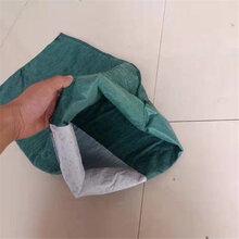 山东定制加工各种规格生态袋护坡绿化长丝草籽生态袋图片
