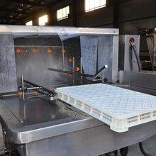 江蘇周轉箱噴淋清洗機洗箱機專用生產直供圖片
