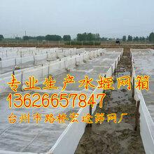 聚乙烯网水蛭养殖网