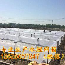 本厂生产的水蛭养殖网箱