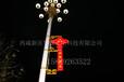 led灯杆造型厂家直销/led灯杆造型设计发展