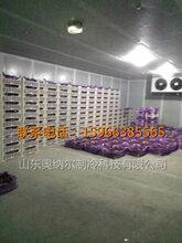 葡萄保鲜库果蔬保鲜冷库工程彩钢整体冷库