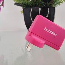 工厂直销5V3.1A双USB接口IC方案苹果方案充电器私模产品认证齐全图片