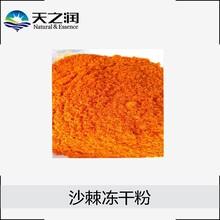 厂家现货供应沙棘冻干粉、零提取、零添加、沙棘冻干纯粉图片
