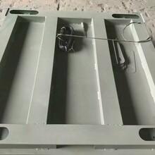 萍乡市电子磅秤厂家,吨位尺寸可定制