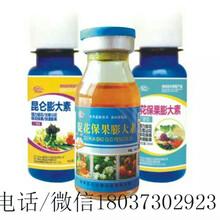 效果好的調節劑昆侖膨大素果蔬專用膨大美果素圖片