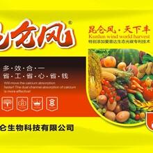 热烈祝贺昆仑风增产套餐订货大会在安徽阜南圆满成功
