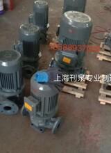 立式管道循環泵圖片