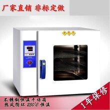 厂家直销小型台式恒温鼓风烤箱实验室烘箱干燥箱