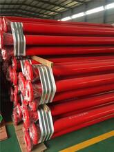 推荐阿克苏地区新和饮水tpep防腐钢管厂家价格优质服务图片