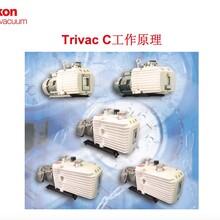 北京萊寶D30真空泵配件葉片圖片