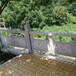 厂家供应花岗岩栏杆扶手价格、芝麻灰栏杆