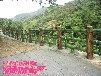 供应泰州镇江南通水泥仿竹子护栏园林景观木栅栏