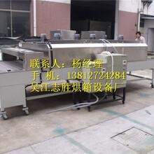 耐高温特氟龙流水线烘箱分段式流水线烤箱灭菌烘干箱图片