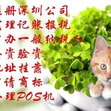 番禺南村公司注册市桥公司注册广州公司注册
