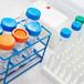 腾田化学防锈除锈专家:无渣锌系磷化液