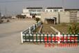 西安格拉瑞斯PVC护栏规格绿化草坪护栏价格