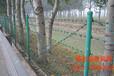 供应刺绳铁蒺藜刺丝刺线-西安格拉瑞斯刺绳厂