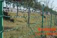 西安格拉瑞斯供应刺绳护栏网量大从优
