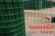 西安格拉瑞斯養殖荷蘭網綠色浸塑荷蘭網
