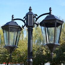 欧式户外欧式室户外道路灯公园别墅景观庭院灯小区花园草坪亮化高杆灯图片