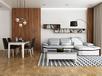 詩尼曼家居100客廳家具,多功能真皮沙發