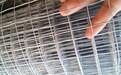 镀锌焊接铁丝网厂家定制