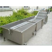 供应成套果蔬加工设备,叶菜类蔬菜清洗机,大葱清洗机