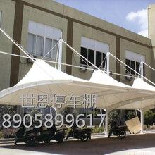 苏州张家港膜结构自行车棚汽车车棚制作安装膜布批发厂家图片