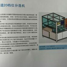 东莞三缘专业生产圆柱电池10通道20档位分选机