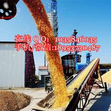 砂石装车专用输送机加工定做防滑式输送机袋装水泥装车输送机