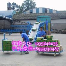 氧化碳颗粒输送机粮食装车专用输送机污泥专用皮带输送机