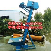 沙子斗式提升机移动式斗式提升机水泥粉斗式提升机图片