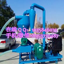 水稻气力吸粮机大型粮食装车吸粮机油菜籽气力吸粮机图片