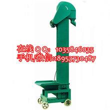油菜籽专用斗式提升机不锈钢斗式提升机面粉专用提升机图片