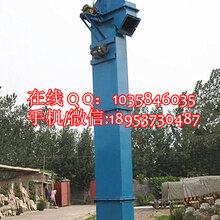 生物質顆粒斗式提升機TD160大米斗式提升機重型礦山斗式提升機圖片