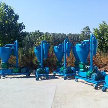 ?#30042;?#24066;大豆装车软管吸粮机农业长距离吸粮机厂家图片